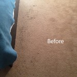 Bedroom-Carpet-Cleaning-Livermore-A