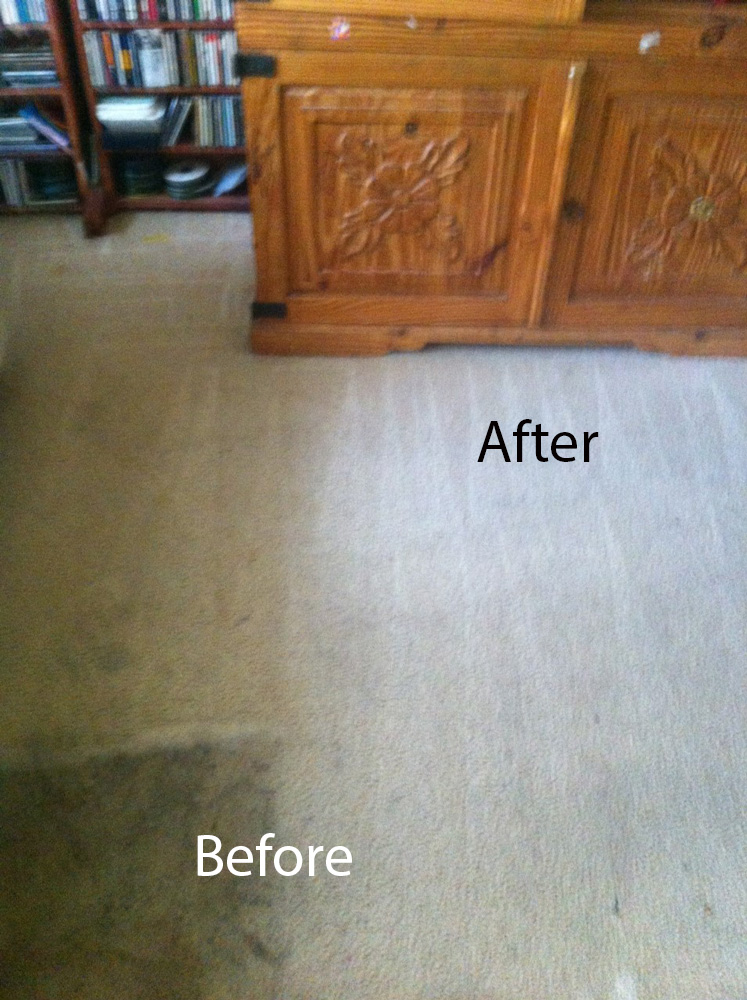 Carpet Cleaning Livermore Ideas