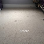 Bedroom-Wall-to-Wall-Carpet-Cleaning-Livermore-A