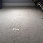 Bedroom-Wall-to-Wall-Carpet-Cleaning-Livermore-B
