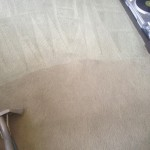 Carpet-Cleaning-Livermore