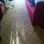 Livermore-Carpet-Clean-before