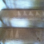Livermore-Stairs-Carpet-Cleaning