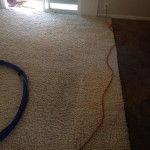 Livermore-Traffic-Area-carpet-cleaners