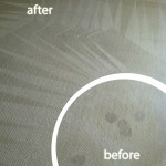 Livermore-Wine-Stain-Carpet-Cleaning